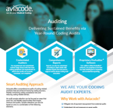 auditing brochure thumbnail